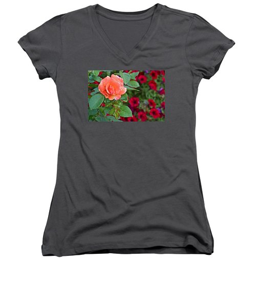 2015 Fall Equinox At The Garden Sunset Rose And Petunias Women's V-Neck