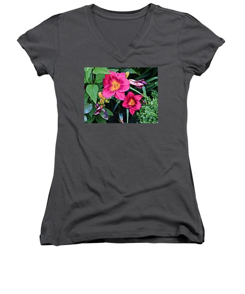 2015 Summer At The Garden Strawberry Candy Daylily 2 Women's V-Neck
