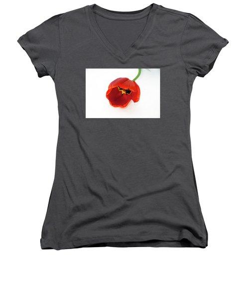 Red Tulip Women's V-Neck T-Shirt (Junior Cut) by Elvira Ladocki