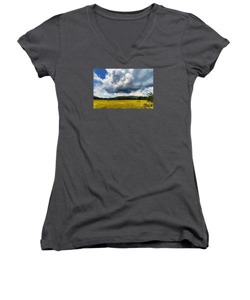 Cranberry Glades Botanical Area Women's V-Neck T-Shirt (Junior Cut) by Thomas R Fletcher