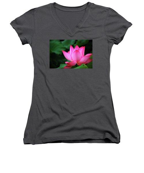 Blossoming Lotus Flower Closeup Women's V-Neck