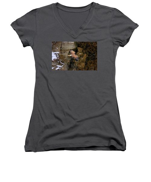 Women's V-Neck (Athletic Fit) featuring the photograph Bald Eagle by Peter Lakomy