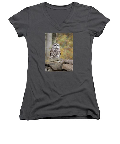 Barred Owl Women's V-Neck T-Shirt (Junior Cut) by Tyson and Kathy Smith