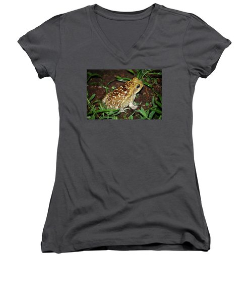 Cane Toad Women's V-Neck T-Shirt (Junior Cut) by Breck Bartholomew