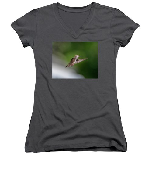 Female Ruby Throated Hummingbird Women's V-Neck T-Shirt