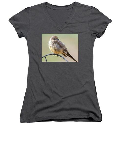 Say's Phoebe Women's V-Neck T-Shirt