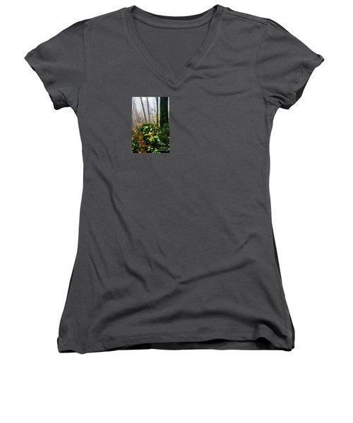 Autumn Monongahela National Forest Women's V-Neck T-Shirt (Junior Cut) by Thomas R Fletcher