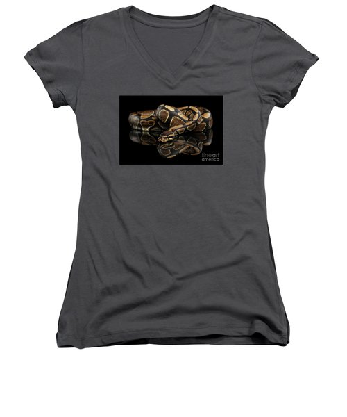 Women's V-Neck featuring the photograph Ball Or Royal Python Snake On Isolated Black Background by Sergey Taran