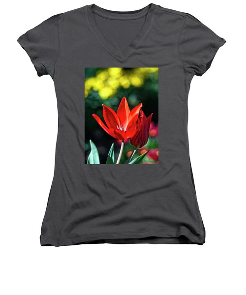 Spring Garden Women's V-Neck T-Shirt (Junior Cut) by Miguel Winterpacht