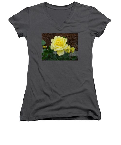 4 Yellow Roses Women's V-Neck T-Shirt (Junior Cut) by Shirley Heyn