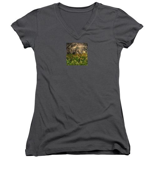 4209 Women's V-Neck T-Shirt