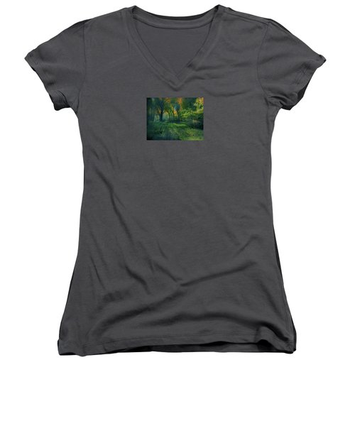 Women's V-Neck T-Shirt (Junior Cut) featuring the photograph 4363 by Peter Holme III