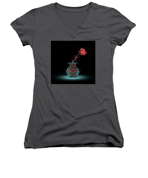 Women's V-Neck T-Shirt featuring the photograph 4469 by Peter Holme III