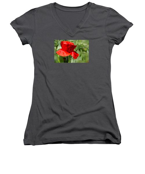 Poppy Women's V-Neck T-Shirt (Junior Cut) by Martina Fagan