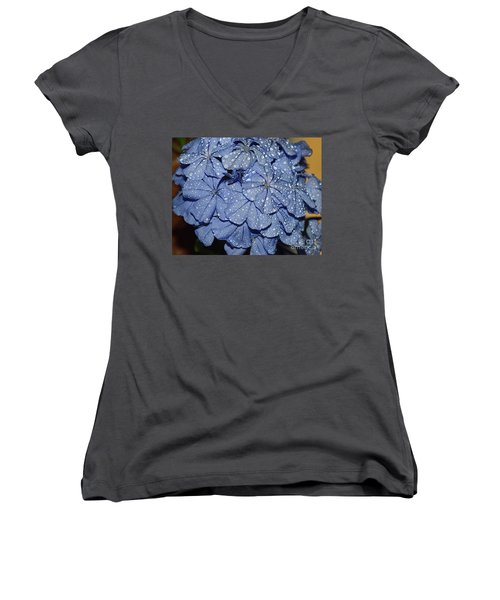 Blue Plumbago Women's V-Neck T-Shirt