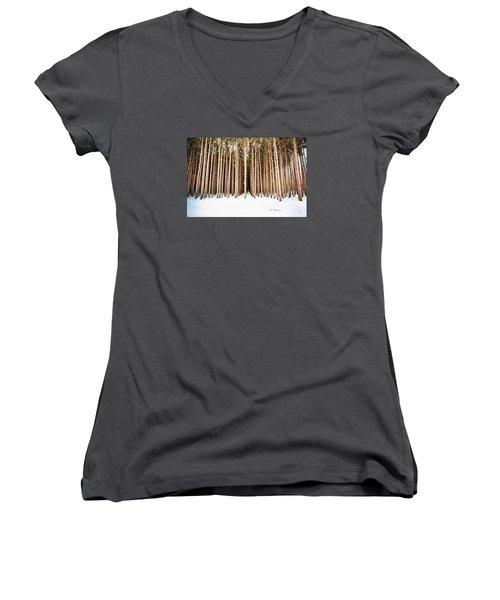 Michigan Winter Women's V-Neck T-Shirt (Junior Cut) by Jill Wellington