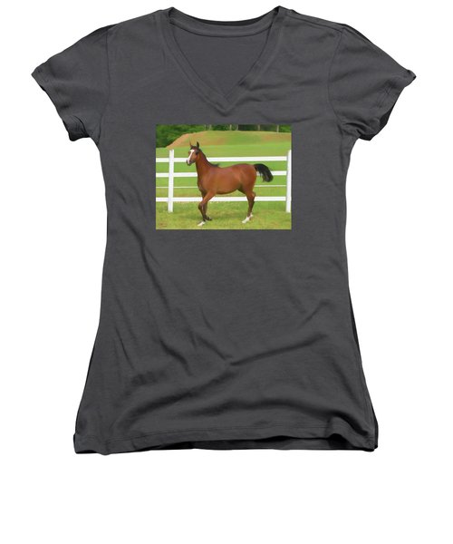 A Beautiful Arabian Filly In The Pasture. Women's V-Neck