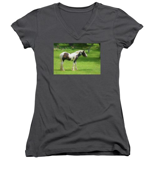 A Beautiful Young Gypsy Vanner Standing In The Pasture Women's V-Neck
