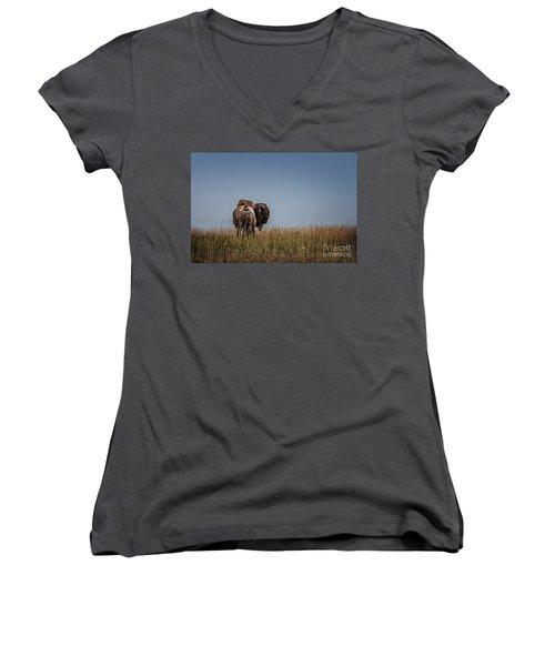 A Bison Interrupted Women's V-Neck T-Shirt