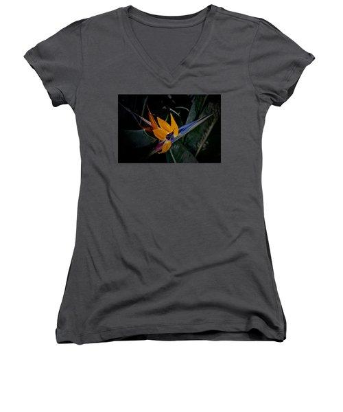 A Bright Blooming Bird Women's V-Neck T-Shirt