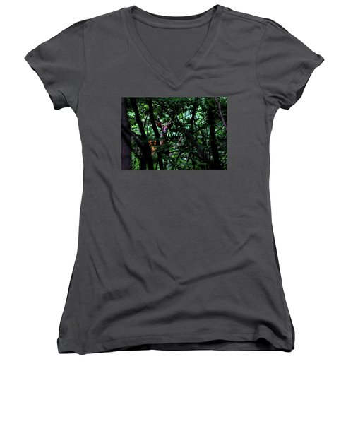 A Buck Peers From The Woods Women's V-Neck T-Shirt (Junior Cut) by Bruce Patrick Smith