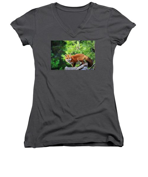 A Cunning Hunter Women's V-Neck T-Shirt (Junior Cut) by Gary Hall