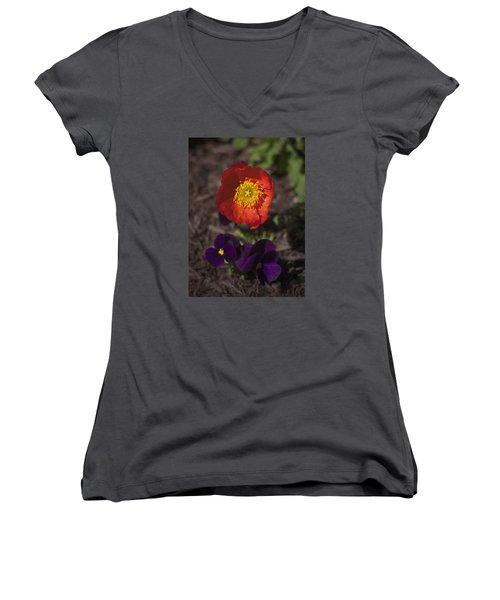 A Deep Richness Women's V-Neck T-Shirt (Junior Cut) by Morris  McClung