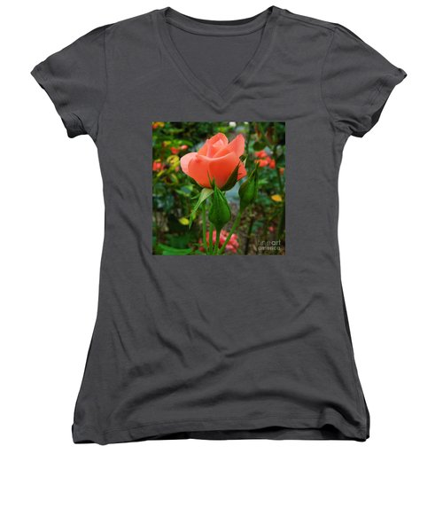 A Delicate Pink Rose Women's V-Neck T-Shirt