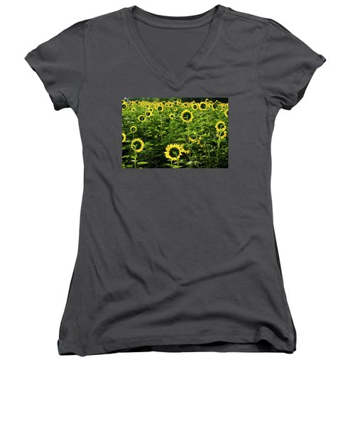 A Flock Of Blooming Sunflowers Women's V-Neck