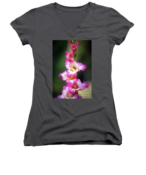 A Gladiolus Women's V-Neck T-Shirt