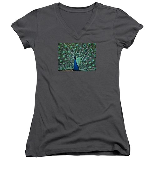 A Glory To The Eyes Women's V-Neck T-Shirt