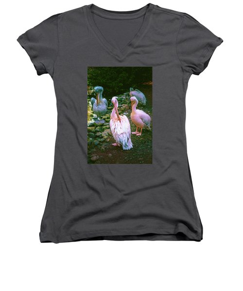 a group of swans near the pond on a Sunny summer day Women's V-Neck T-Shirt
