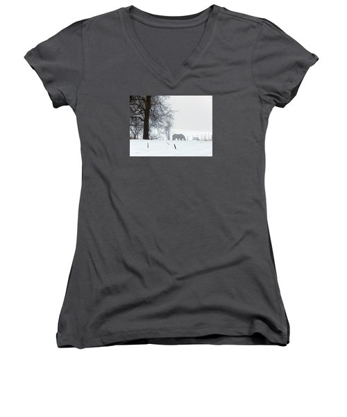 A Horse Of A Different Color Women's V-Neck