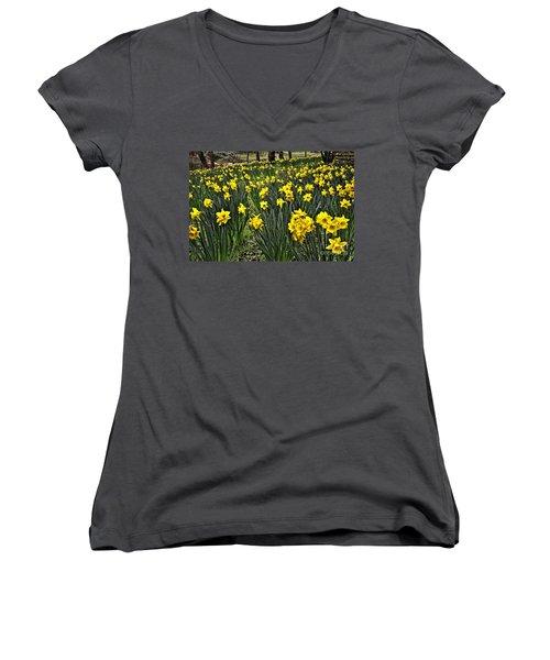 A Host Of Golden Daffodils Women's V-Neck
