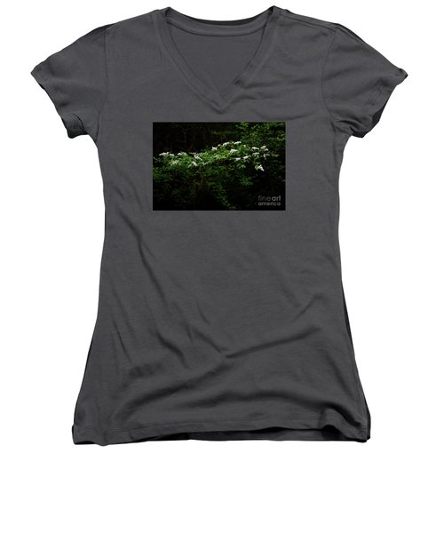 Women's V-Neck T-Shirt (Junior Cut) featuring the photograph A Light In The Darkness by Skip Willits