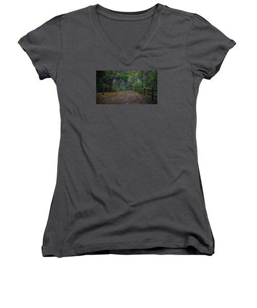 Women's V-Neck T-Shirt (Junior Cut) featuring the photograph A Lincoln Park Autumn by Ken Stanback