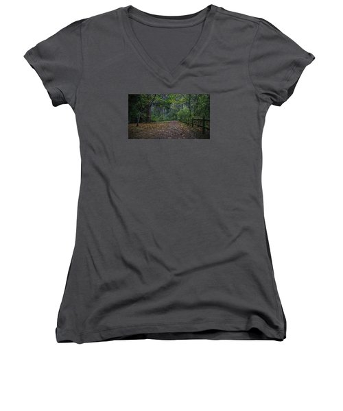 A Lincoln Park Autumn Women's V-Neck (Athletic Fit)