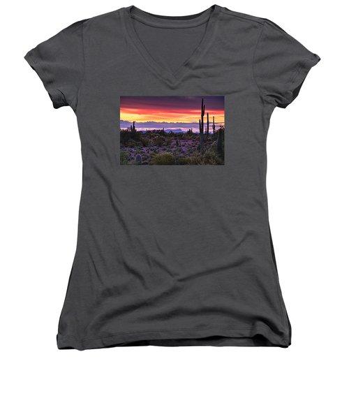 A Magical Desert Morning  Women's V-Neck