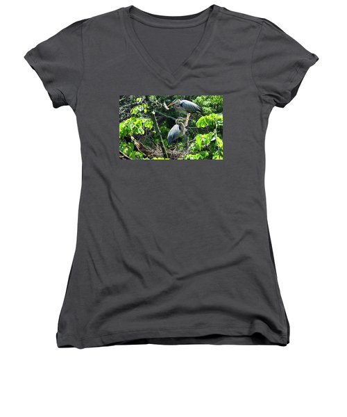 A Nesting Pair Of Great Blue Herons Women's V-Neck (Athletic Fit)