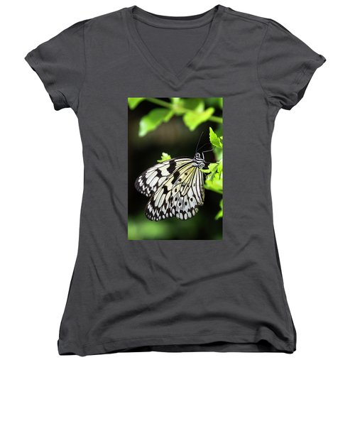 Women's V-Neck T-Shirt featuring the photograph A Paper Kite Butterfly On A Leaf  by Saija Lehtonen
