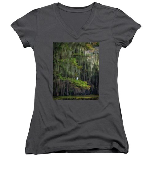 A Perch With A View Women's V-Neck T-Shirt