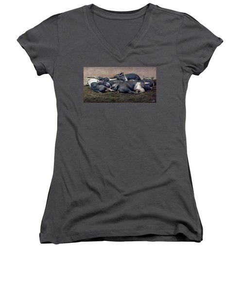 A Pile Of Pampered Piglets Women's V-Neck