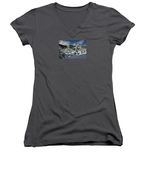 A Place In The Winter Sun Women's V-Neck (Athletic Fit)