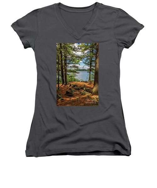 A Secluded Spot Women's V-Neck (Athletic Fit)