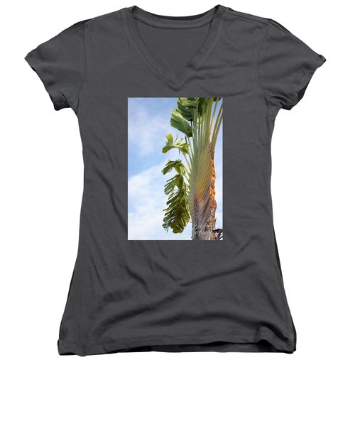 A Slice Of Nature Women's V-Neck (Athletic Fit)