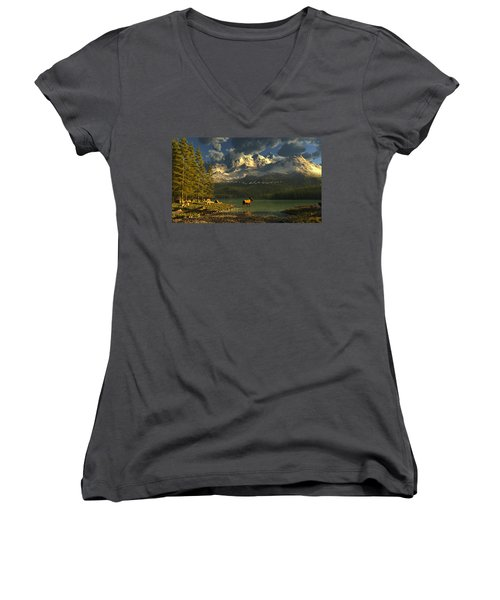 A Small Planet Women's V-Neck