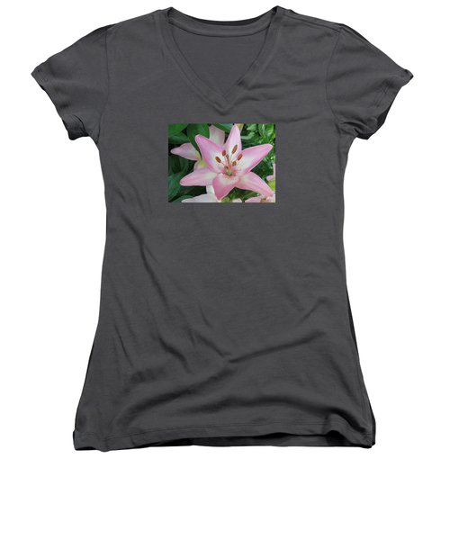 A Star Of Day Women's V-Neck T-Shirt (Junior Cut) by Jeanette Oberholtzer