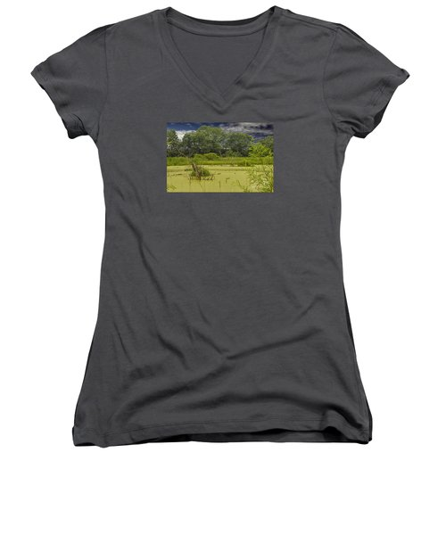 A Swamp Thing Women's V-Neck T-Shirt (Junior Cut) by JRP Photography
