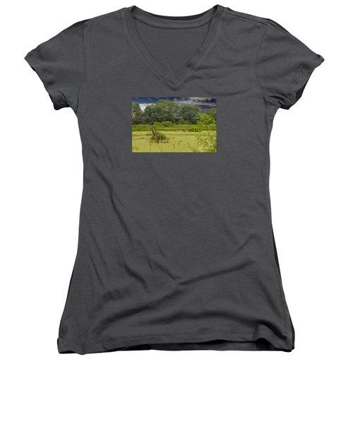 A Swamp Thing Women's V-Neck T-Shirt