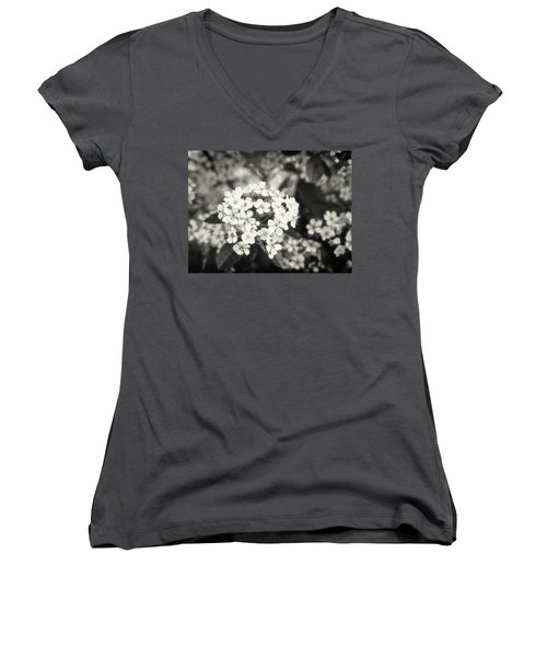 A Thousand Blossoms In Sepia 3x4 Flipped Women's V-Neck